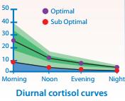 Денонощни колебания на нивата на кортизола